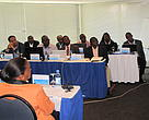 Some of the participants to the Regional meeting in Maputo.