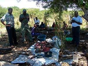 O consumo da carne de Dugongo era uma prática recorrente no PNBA antes da intervenção do WWF.