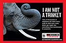 Campanha contra Comercio de Especies Protegidas